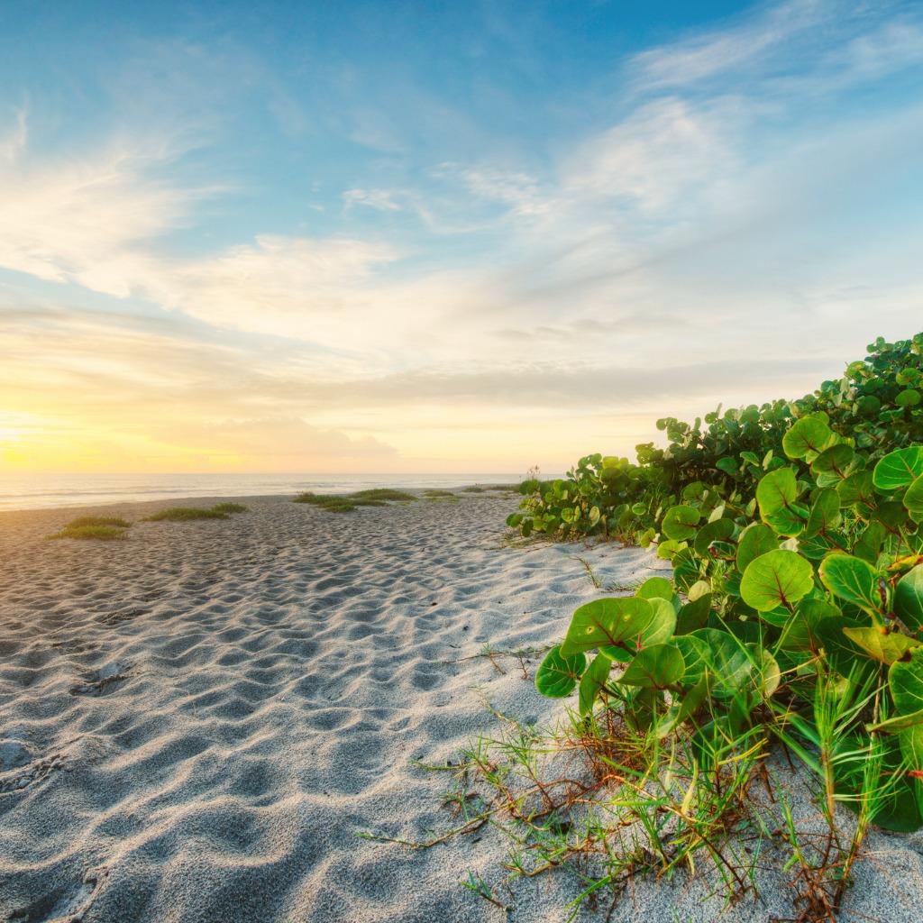 photo of vero beach